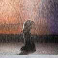 lluvia-flamenco-flamenco