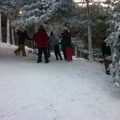 Nieve-celulosa-exteriores